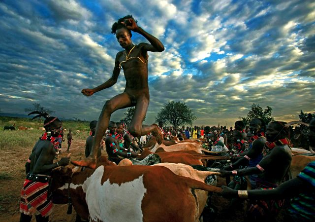 Cow People The Hamar People Of Ethiopia And All Their